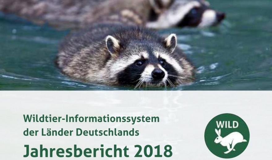 Der DJV hat heute den WILD-Jahresbericht 2018 veröffentlicht. (Quelle: DJV)