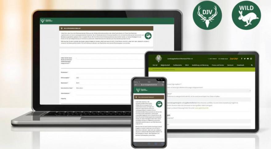 Über die Seite portal.jagdverband.de können Revierinhaber ihre Monitoring-Ergebnisse jetzt online erfassen. (Quelle: Canva/DJV)