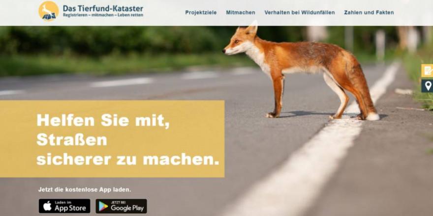 Die Seite Tierfund-Kataster hat ein neues Design erhalten. (Quelle: DJV)
