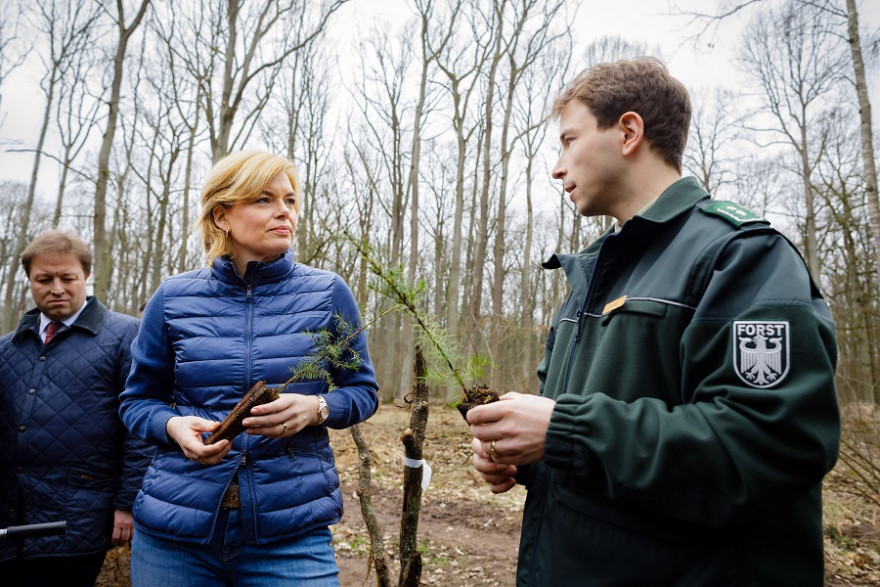 Bundesministerin Julia Klöckner informiert sich am Internationalen Tag des Waldes im brandenburgischen Nauen über den Zustand des Waldes.