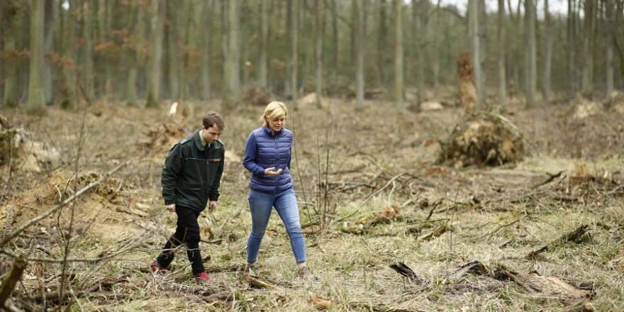Bundesministerin Julia Klöckner informiert sich am Internationalen Tag des Waldes im brandenburgischen Nauen über den Zustand des Waldes. (Quelle: BMEL/Photothek)