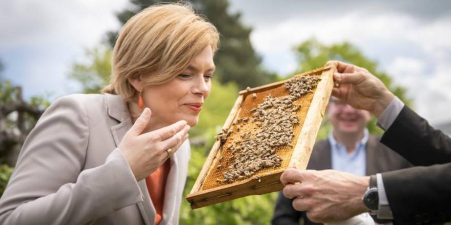 Bundesministerin Julia Klöckner mit einer Bienenwabe beim Besuch des Institutes für Bienenschutz am Julius Kühn-Institut zum Weltbienentag (© BMEL/Xander Heinl/photothek.net)