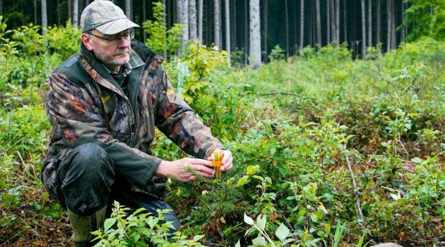 Die landwirtschaftliche Pflege und der Schutz des Waldes gehören zu den Aufgaben von Jäger Hermann (Foto: obs/ZDF/Marcel Martschoke)