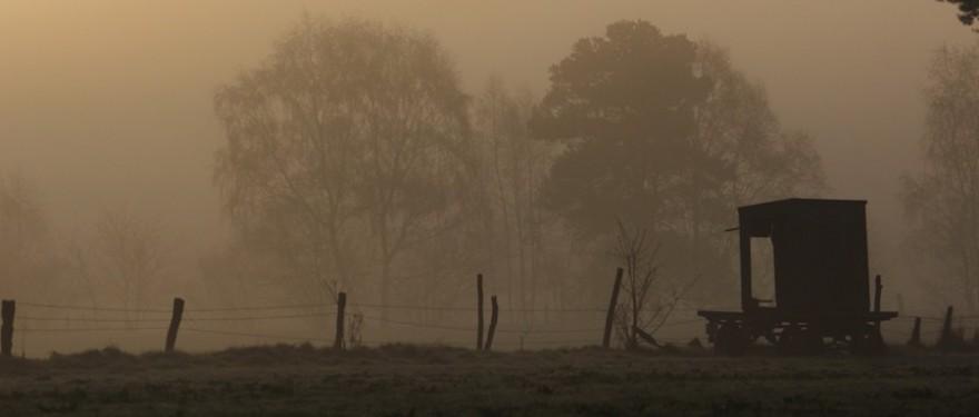 Jagdkanzel im Nebel