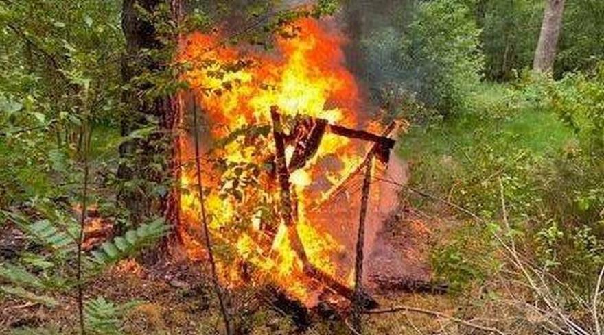 Der brennende Hochsitz (Foto: Feuerwehr Nienburg)