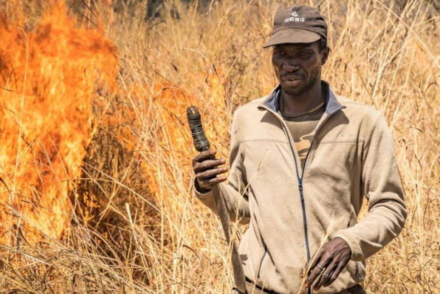 Vertreter des südlichen Afrikas: Grünes Wahlprogrammentwurf stelle Tier- über Menschenrechte. (Quelle: Steinbrink-Minami/DJV/CIC)