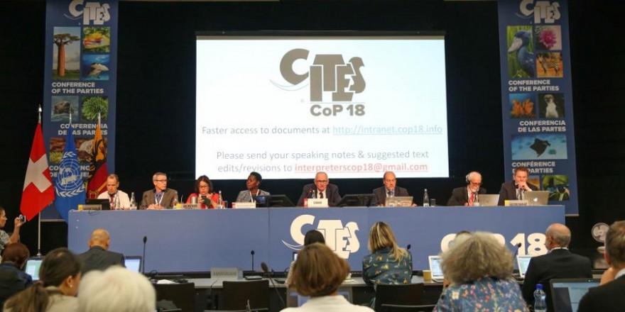 CITES- Konferenz