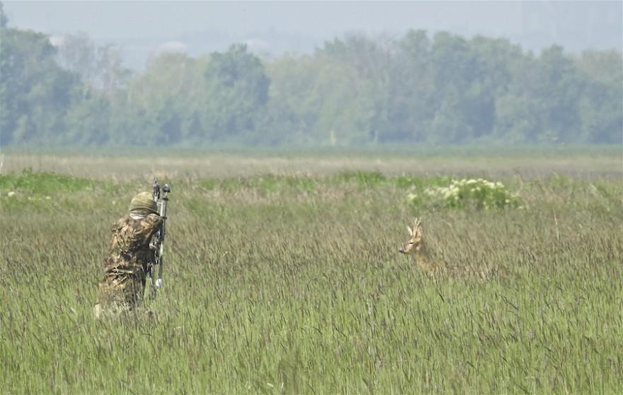 Bogenjäger auf der Jagd auf Rehwild