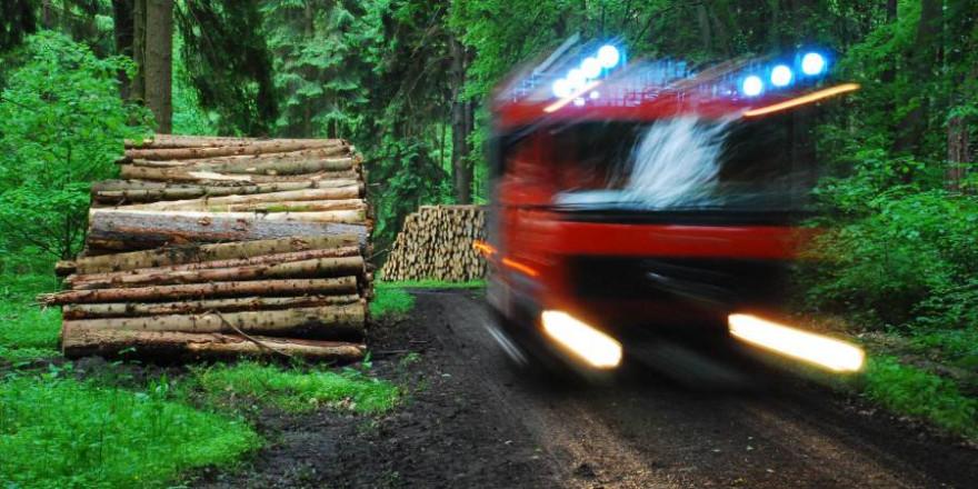 Einsatzfahrt der Feuerwehr im Wald. Hier ist Ortskenntnis gefragt, um schnell sicher an die Einsatzstelle zu gelangen. (Foto: Niedersächsische Landesforsten)
