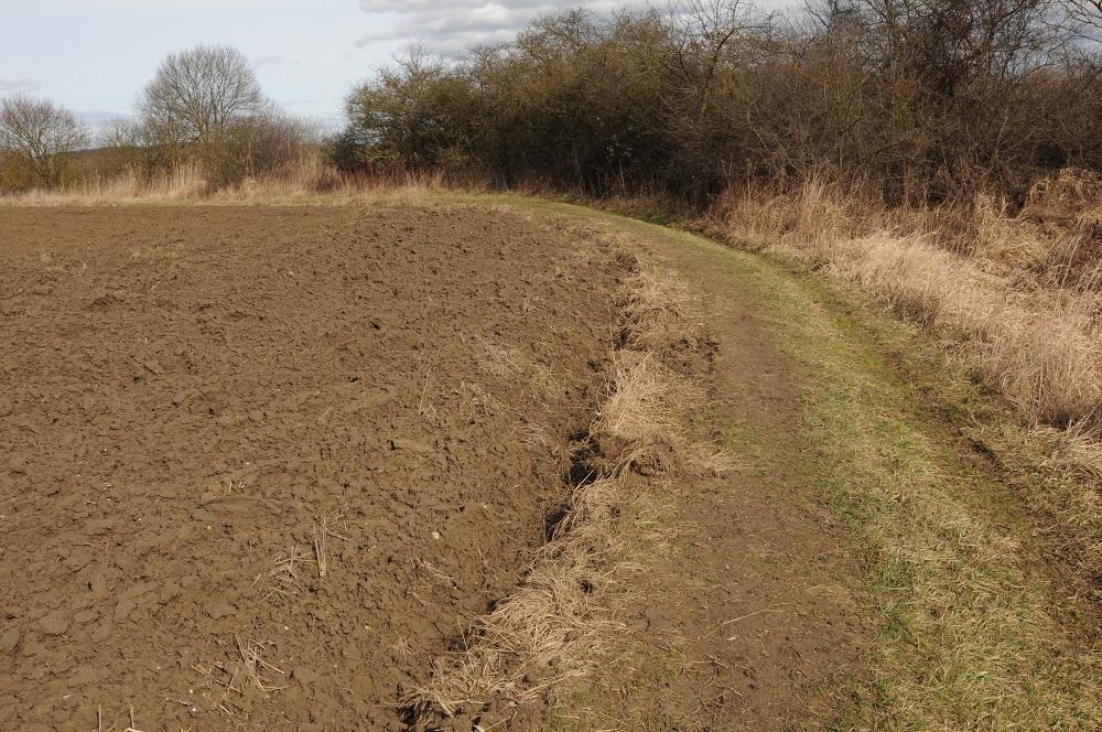 Wenn jedes Jahr ein paar Zentimeter mehr untergepflügt werden, dann wird auch bald dieser Weg Geschichte sein und das Feld direkt bis zum Heckenstreifen reichen. (Foto: W&W)
