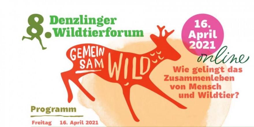 Logo des 8. Denzlinger Wildtierforums (Quelle: Screenshot)