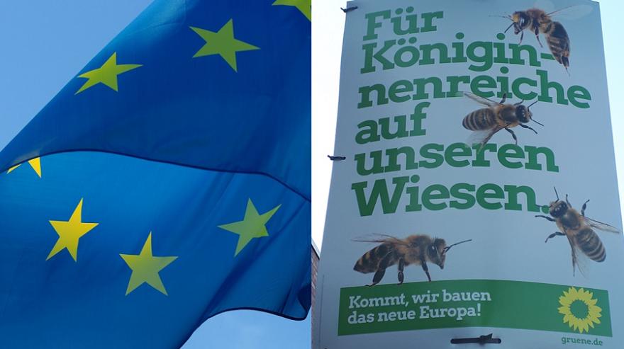 Große Zuwächse der Grünen bei der Europawahl