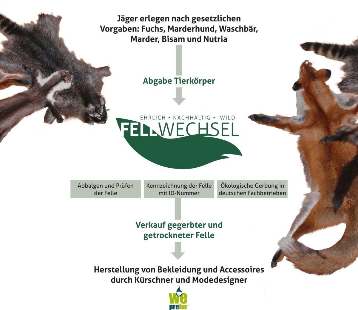 Quelle: Fellwechsel GmbH