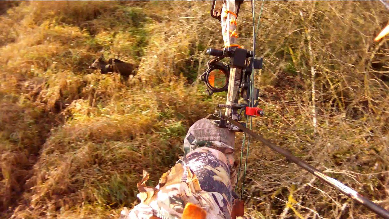 Mit dem Bogen auf die Jagd