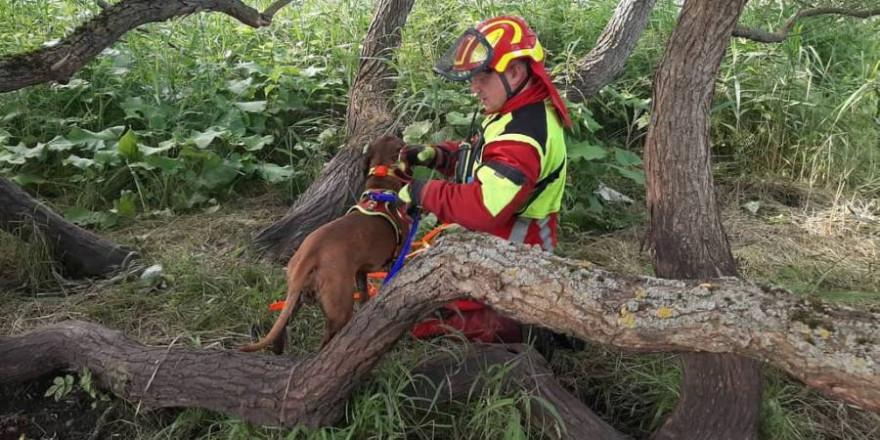 Schweißhundeführer mit Schweißhund (Foto: S. Grimm)