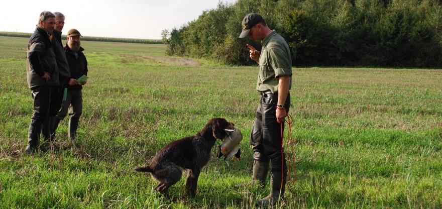 Jagdhunde-Prüfung mit der Ente