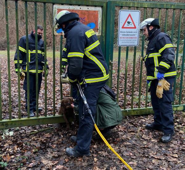 Mittels eines hydraulischen Spreizers konnte der Welpe aus seiner misslichen Lage befreit werden (Bildquelle: Feuerwehr Herdecke)