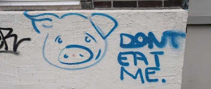 Anti-Fleisch Graffiti