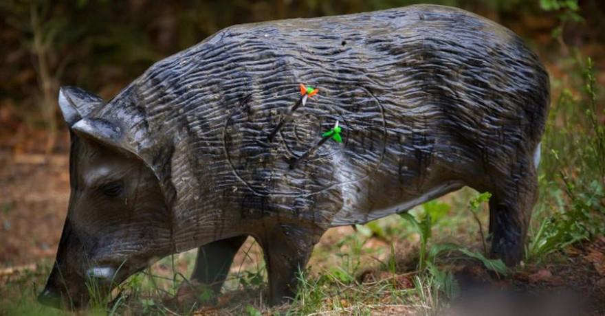 Bogenjäger müssen in der Lage sein mit jedem Jagdpfeil konstant eine Trefferfläche in der Größe eines Bierdeckels treffen zu können (Foto: Falk Hennings)