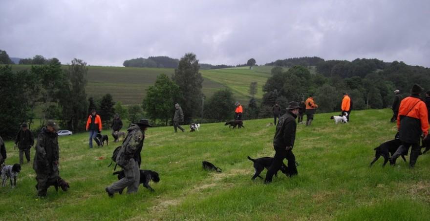 Jagdhunde-Ausbildung