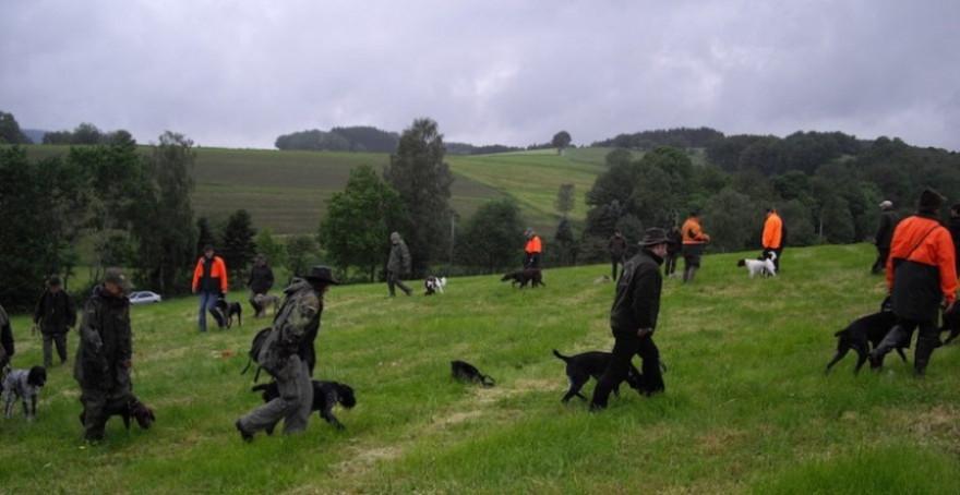 Jagdgebrauchshundeprüfung