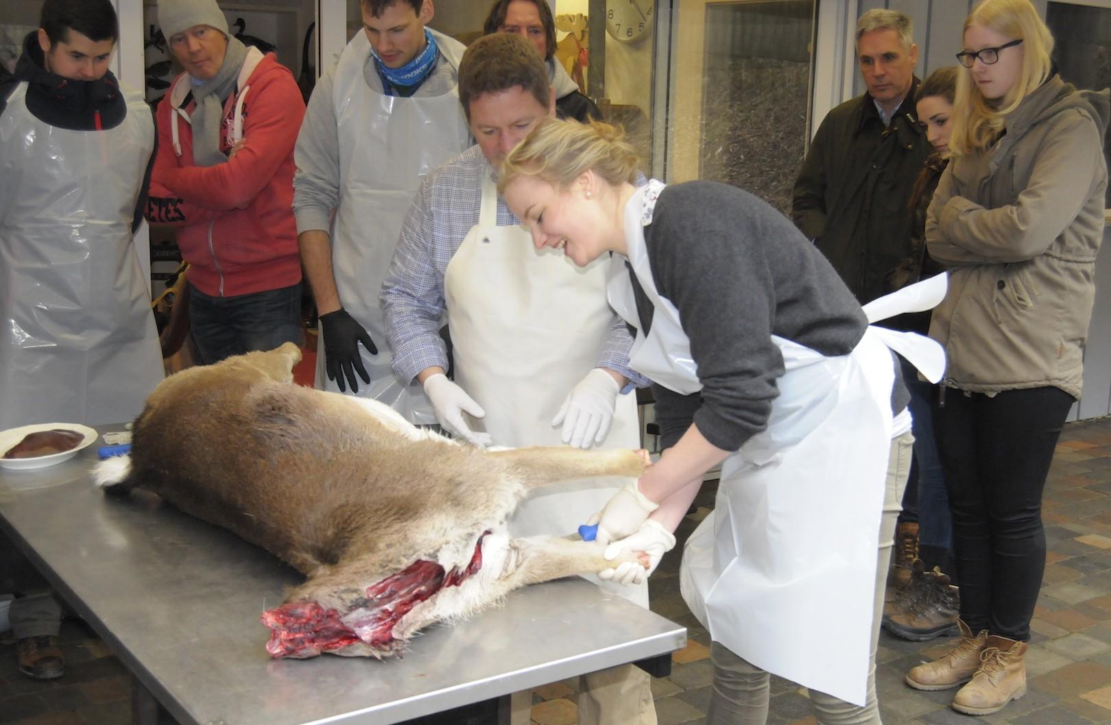 Jagdlehrer Ol Holler zeigt seiner Schülerin Sophie von Korff, wie sie das Stück Damwild richtig aus der Decke schlägt.