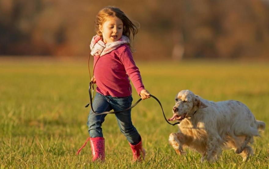 Jagdhunde sind Gefährten und vollwertige Familienmitglieder zugleich. (Quelle: Schlenther/DJV)