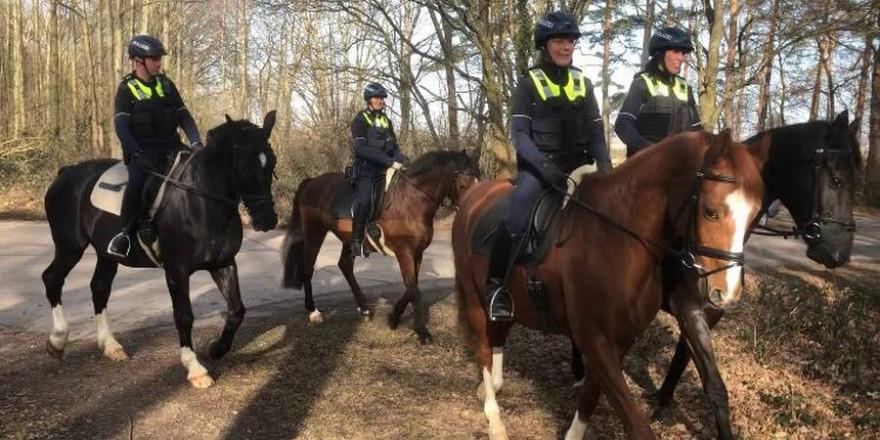 Beamte der Reiterstaffel im Einsatz (Foto: Polizei)