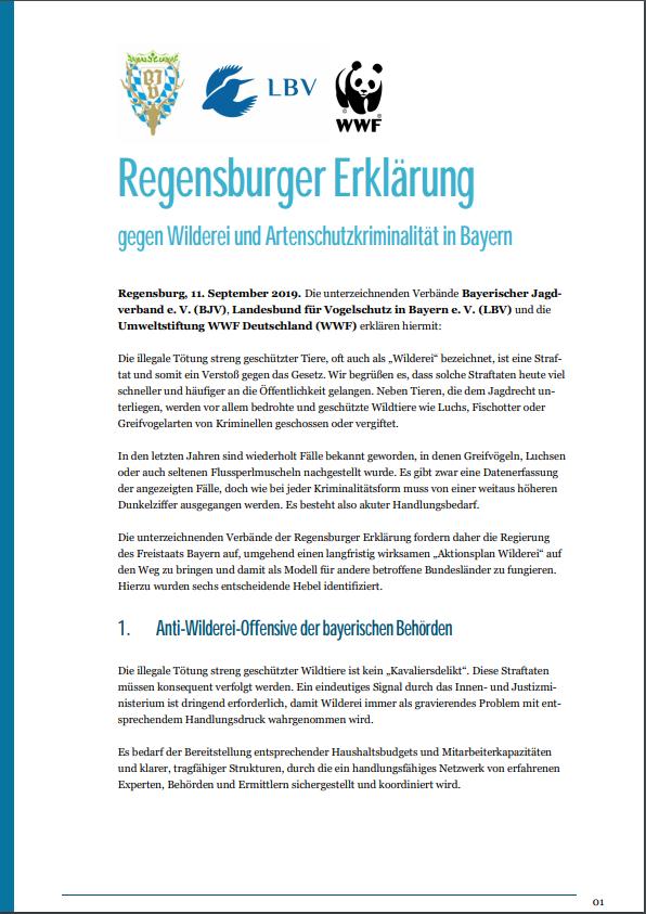 Regensburger Erklärung Seite 1