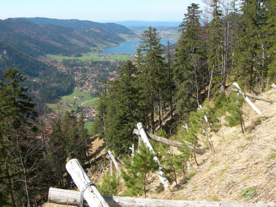 Schutzwaldsanierung_Schliersee