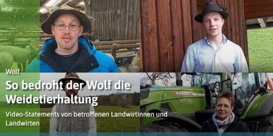 So bedroht der Wolf die Weidetierhaltung. Videostatements von betroffenen Landwirtinnen und Landwirten (Quelle: DBV)