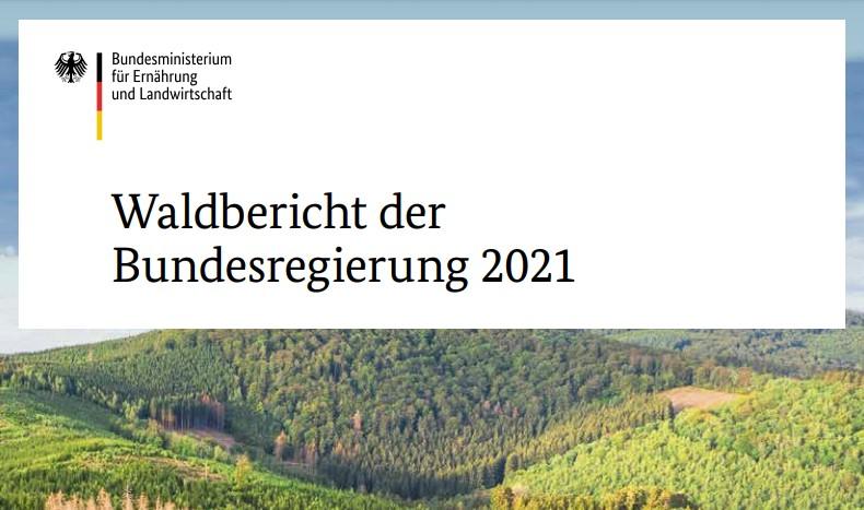 Cover des Waldberichts der Bundesregierung 2021 (Screenshot: BMEL)