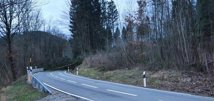 """""""Sabine"""" sorgte durch umgestürzte Bäume, wie hier in der niedersächsischen Gemeinde Dassel, mancherorts für massive Verkehrsbehinderungen (Foto: © Niedersächsische Landesforsten)"""