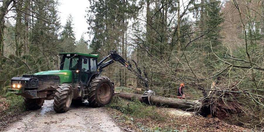 Waldarbeiter bei der Beseitigung von Sturmschäden im Harz (Foto: © Niedersächsische Landesforsten)