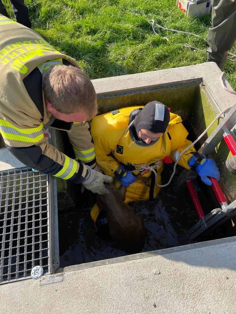 Rettung aus dem schmalen Schacht der Kläranlage (Foto: Feuerwehr Xanten)