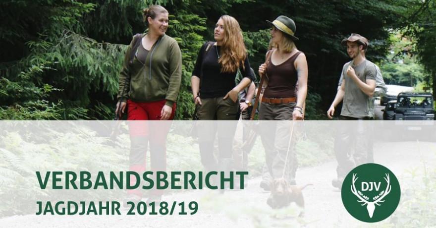 Verbandsbericht 2019