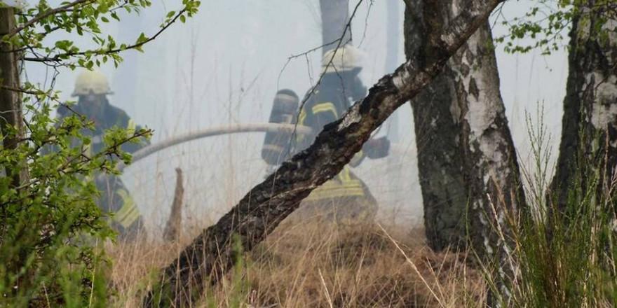 Waldbrandbekämpfung (Quelle: Wald und Holz NRW)