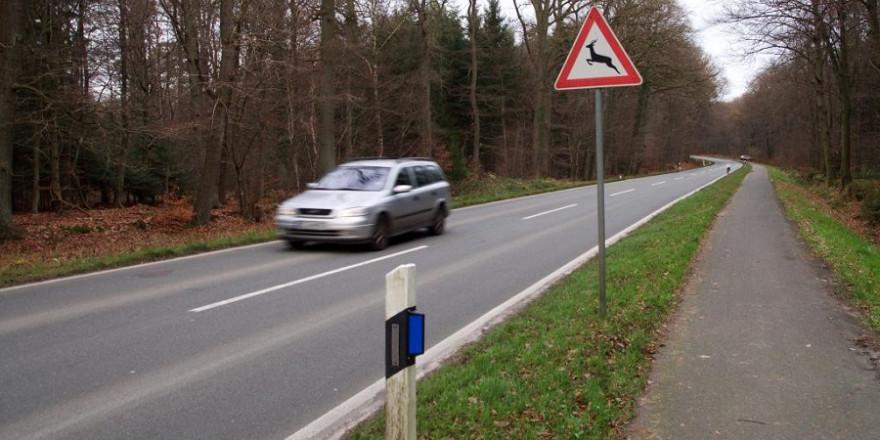 """PKW mit Verkehrsschild """"Vorsicht Wildwechsel"""""""