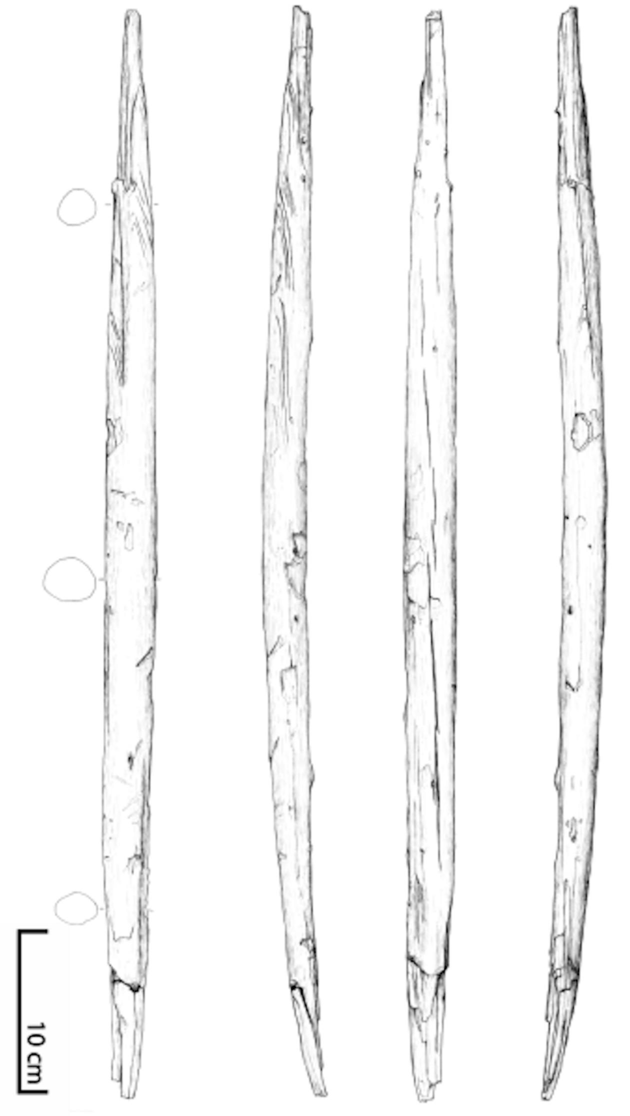 Zeichnung des Wurfstocks aus Schöningen (Zeichnung: Ralf Ehmann)