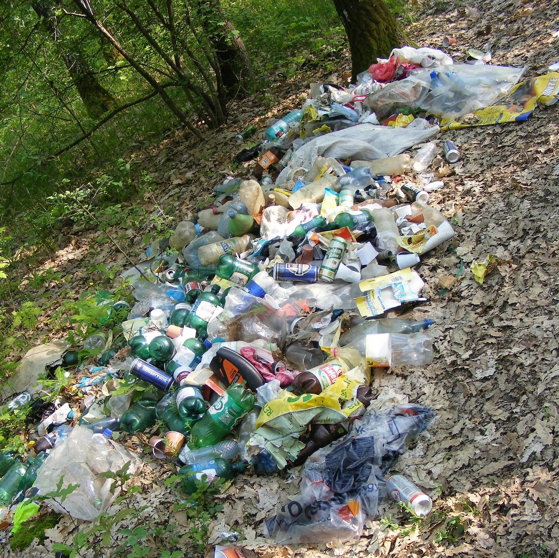 Achtlos weggeworfener Müll gefährdet Wildtiere