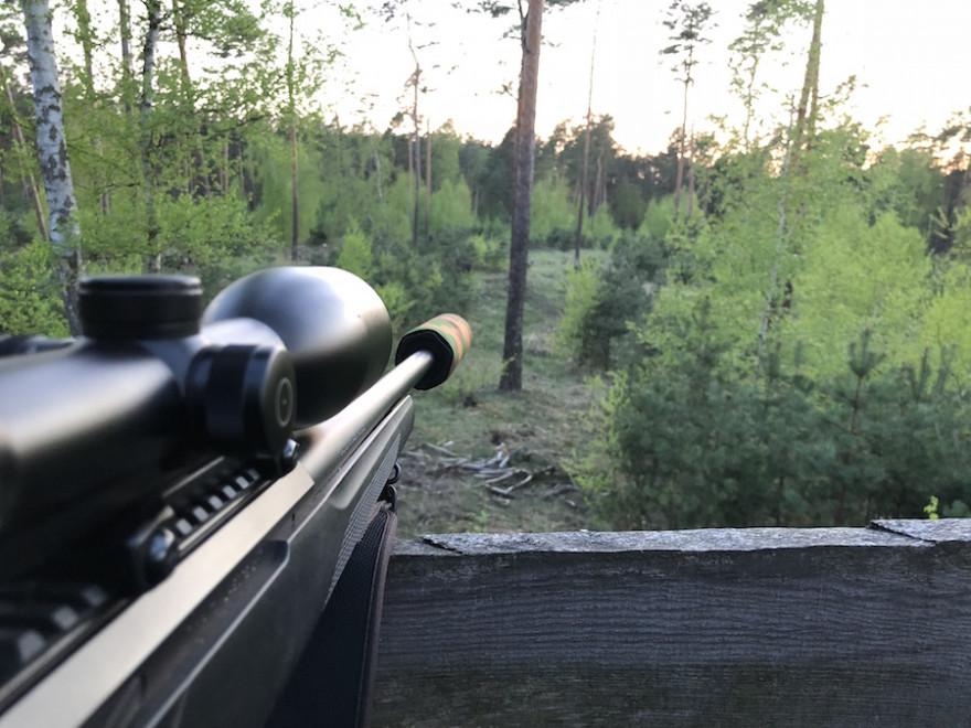 Jagdgewehr mit Zielfernrohr und Schalldämpfer (Beispielbild: Felix Gerth)