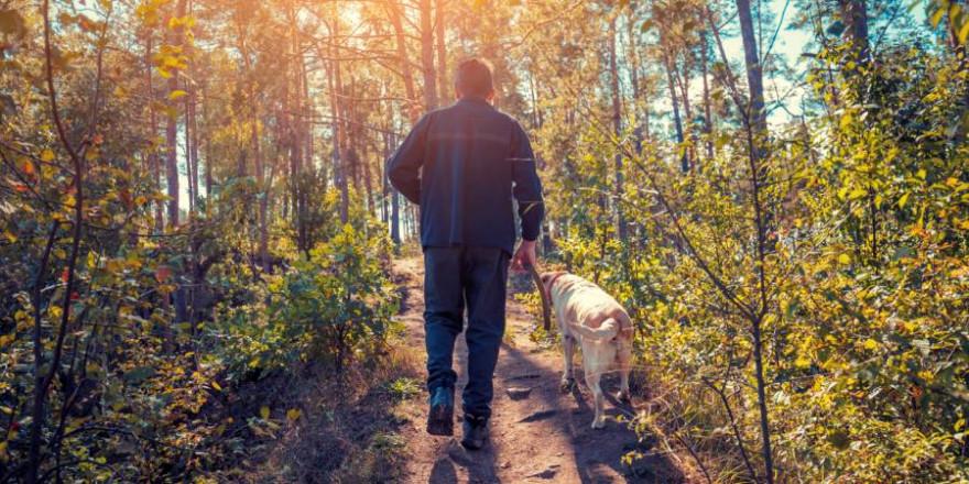 Mann mit Hund an der Leine im Wald (Foto: iStock/vvvita)