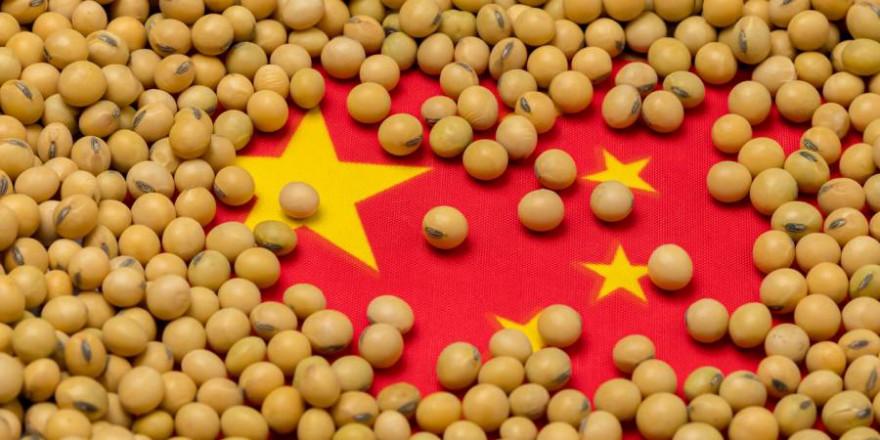 Flagge Chinas mit Sojabohnen bedeckt (Symbolbild: iStock/JJ Gouin)