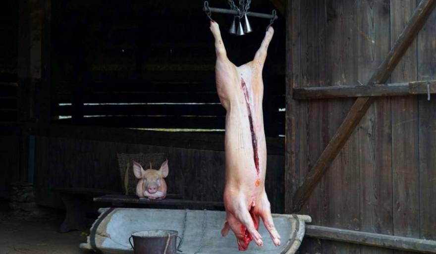 Ein frisch geschlachtetes Hausschwein vor einer Scheune hängend (Symbolbild: iStock/Milan Sommer)