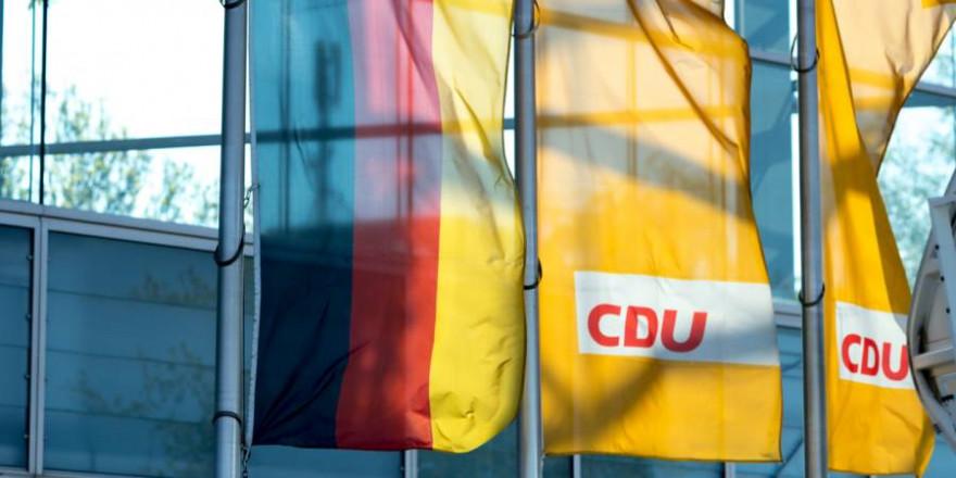 Deutschlandfahne und Fahnen mit DU-Logo (Symbolbild: Cineberg)
