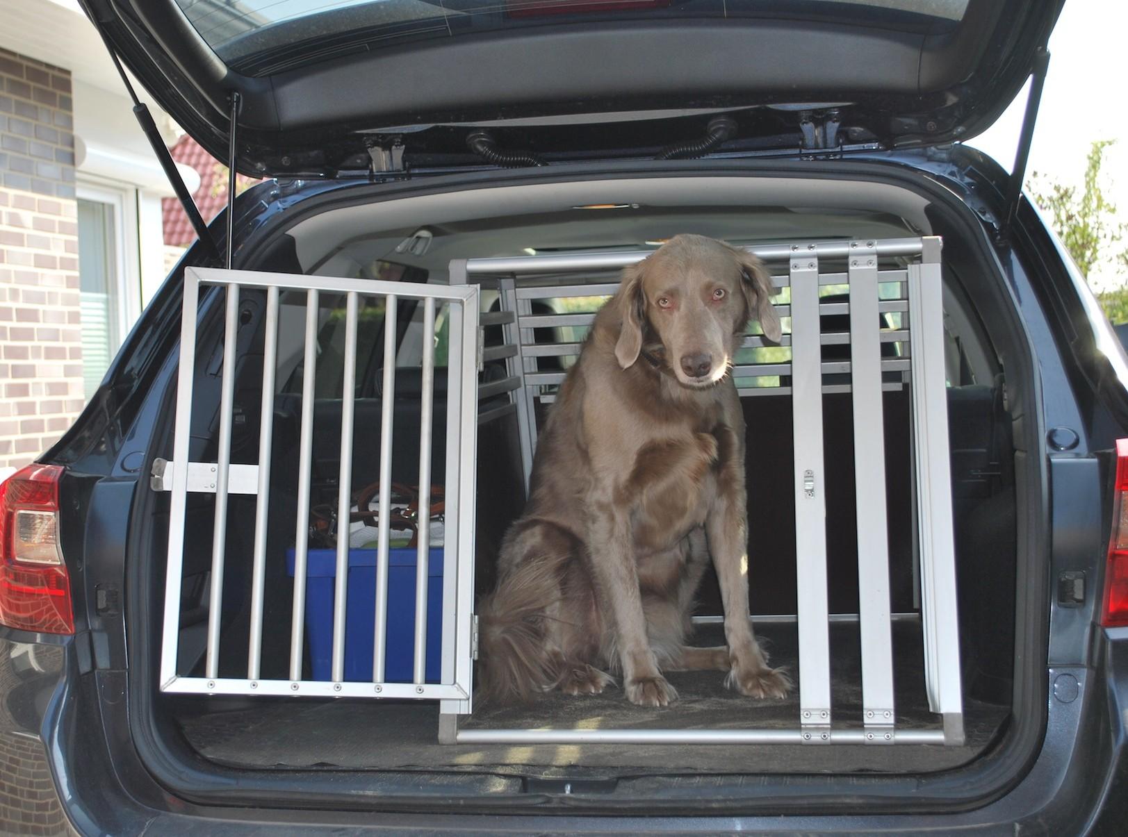 Spezielle Transportboxen für Hunde haben sich als geeignete Möglichkeit durchgesetzt, den Vierbeiner sicher im Auto unterzubringen. Bei Behältnissen für größere Hunde bleibt allerdings nicht mehr viel Platz im Kofferraum für das Gepäck.