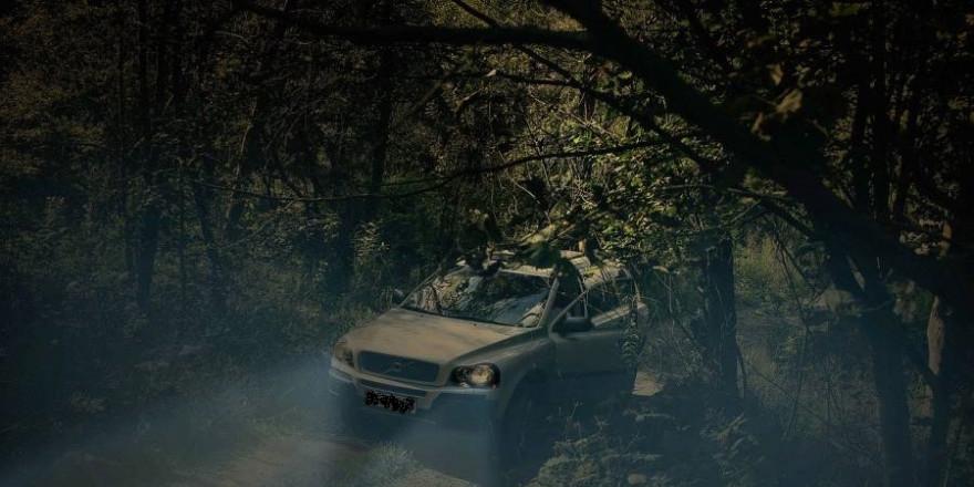 Unter anderem ein verdächtiges Fahrzeug im Wald kamen einem Zeugen in Schopfheim verdächtig vor (Beispielbild: Mateusz Śliwa)