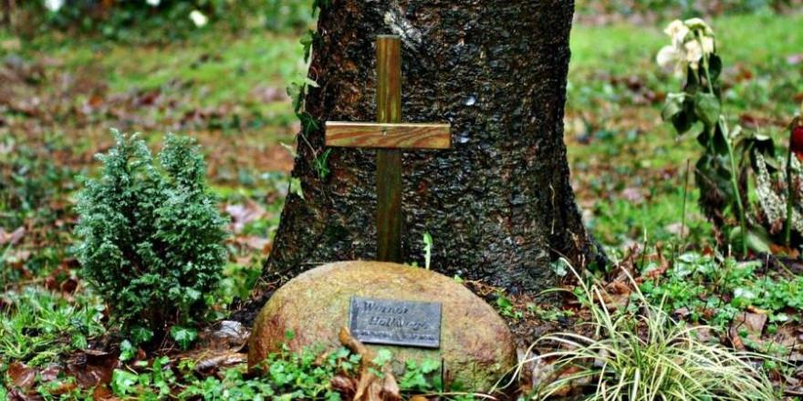 Friedwald (Symbolbild: Ulrich Welzel)
