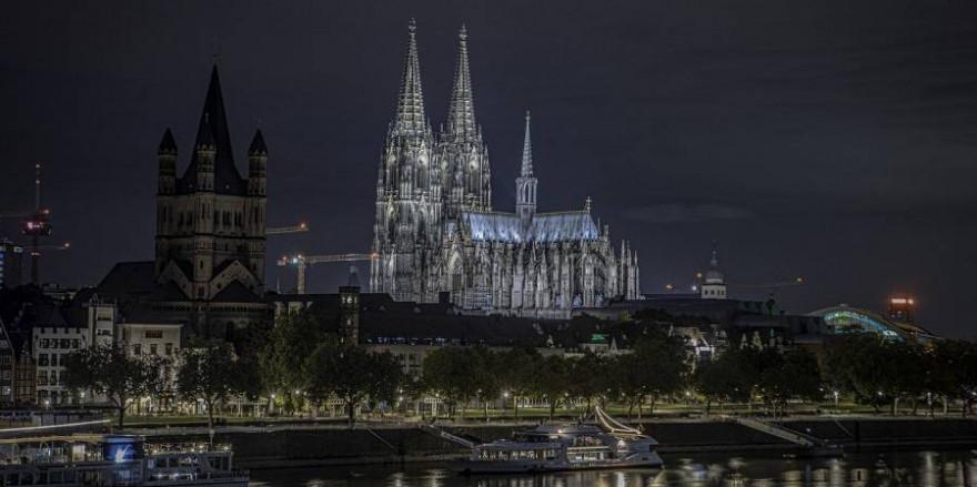 In der Nacht zum 19. Mai 2021 irrte ein Wolf durch das Stadtgebiet von Köln. (Symbolbild: Cheyenne Reeves)