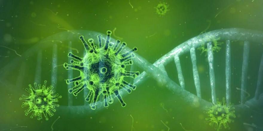 Coronaviren sind hitzeempfindlich, sodass durch das Erhitzen von Lebensmitteln das Infektionsrisiko erheblich gesenkt werden kann (Symbolbild: Pete Linforth)
